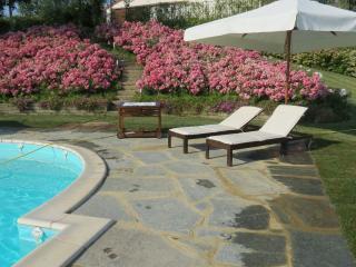 Monferrato farmhouse with salt water pool