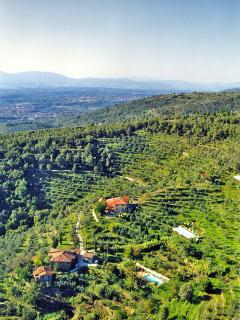 Aerial View of Casa Querceto & Podere Casarotta