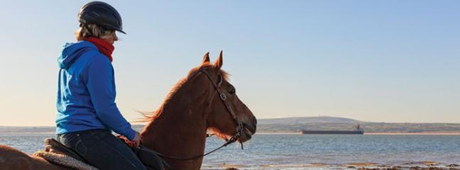 Horse riding in Querrin