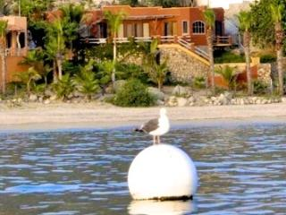 Casa Front Row, Enjoy the best beach in Baja, Los Barriles