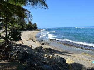 Sea Turtle Guest House-Oceanfront, Hatillo