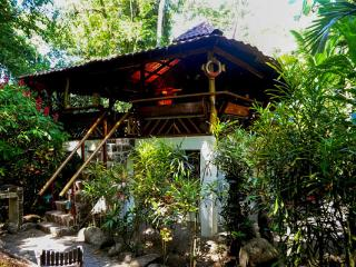 River Dream House @ congo-bongo, Puerto Viejo