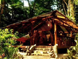 Dream Nature House @ congo-bongo, Puerto Viejo