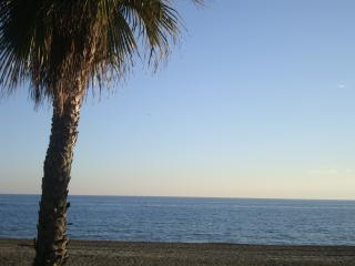 Malaga Yoga Retreats- Benalmadena Venue