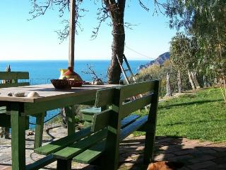 Leo's Lodge - The heart of Cinque Terre