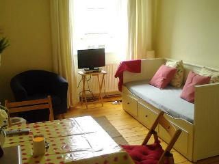Bright and cheerful apartment with free parking, Edinburgh