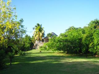 The Sugar House - Historic Beauty!, Belmont