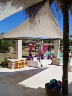 terrace and his biminies