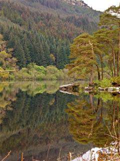 Beautiful Loch Eck