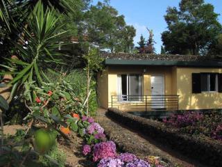 Cottage #6-Quinta das Acacias