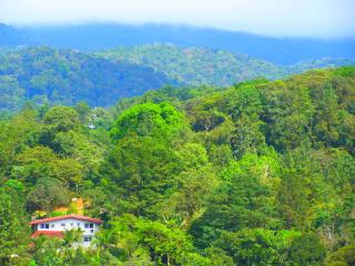 Come visit the Beautiful Mountains of Panama