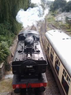 The Forest Railway makes a great day out
