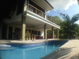 Newly Remodeled Ocean View Villa Private Pool - Wi, Parque Nacional Manuel Antonio