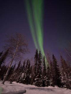 Great Northern Lights directly be near your Cabin.