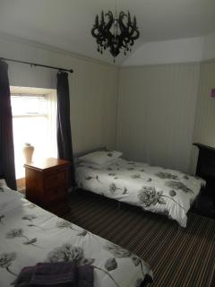 Twin bedroom. 2 single beds. Wall mounted TV. Antique fireplace.