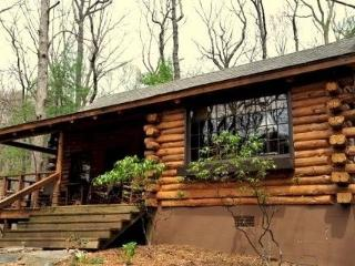 Brer Bear Log Rental Home in Big Canoe Resort