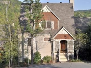 Treehouse Lodge Luxury Rental Home in Big Canoe Resort