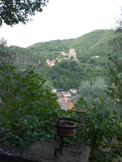 Looking across from the opposite side of the valley to the castle & the house