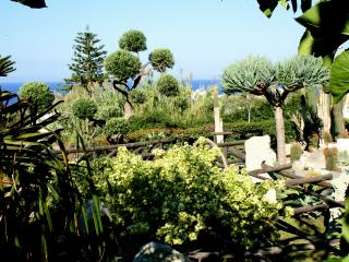 Type A Ischia Ecolodge Ravino BB Self catering