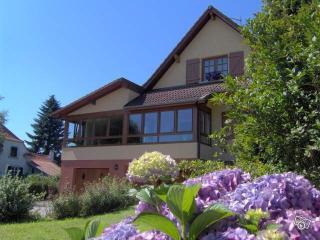 Location du tilleul: Gite 'les Iris', Burnhaupt-le-Haut