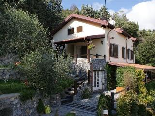 Olive cottage, Moneglia