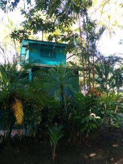 Back view of cabin with gingers and heliconias in garden