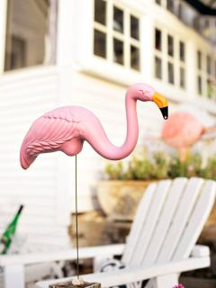 CSM is a fan of the pink flamingo, so they are artistically placed as part of the outside decor.