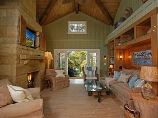 Living Room with 2 story fireplace