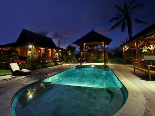 Peaceful Spacious Villa Canggu