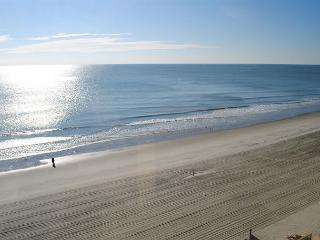 Sunny Cheerful Oceanfront Property Brigadune #8E Shore Dr Myrtle Beach SC