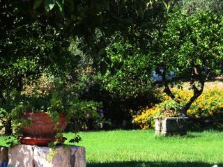 Agriturismo Borgo Levante - Verde 3 posti