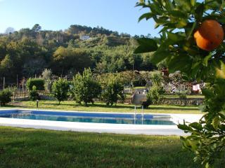 CASA SEQUEIRÔ..onde o amor acontece, Vila Verde