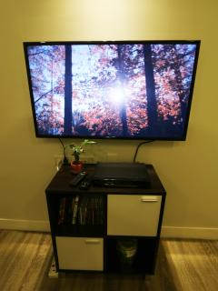 42' Smart HD TV with DVD player. You can use the TV to browse internet, watch youtube, etc.