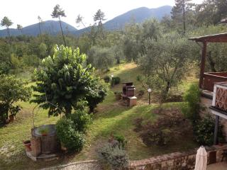 Lucca countryside house WiFi close to City - TFR4, San Macario in Monte