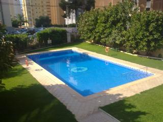 Apartment in Benidorm 101302