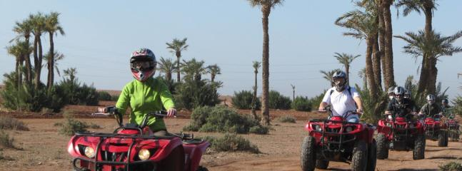 Quad Biking available at our Agency
