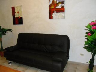 Apartment In Santa Cruz de Tenerife 101462