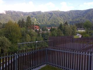 Apartment in Brunek - Riscone