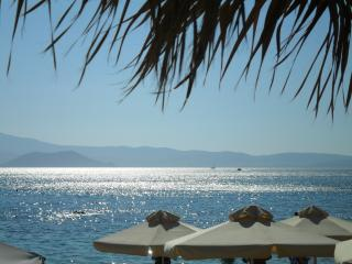 Niriides Studios- sleep 3 - ON Krios beach, Paros, Parikia