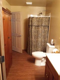 Bathroom with corner shower stall