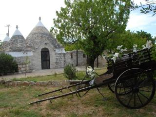 Trullo Tina in Aurasia with pool