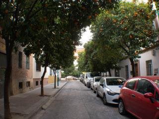 HABITACIÓN CON BAÑO Y COCINA, Sevilla