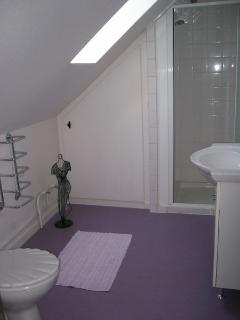 1st Floor WC and Shower