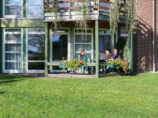 Fabulous flat with sunny terrace, Lake Müritz, Plau