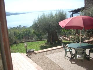 Private garden with barbecue and beautiful view of the lake
