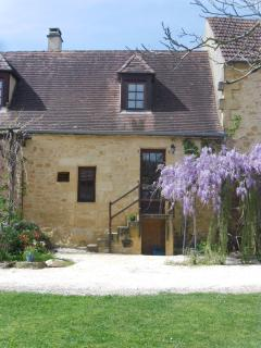 Wisteria covered pergola and patio area at front of Eucalyptus cottage
