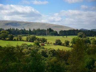 Wanderoo, Brecon