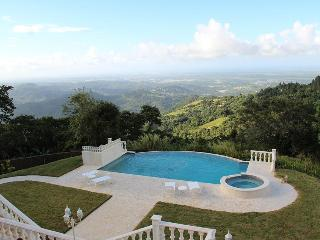 Best Ocean View Mountain Villa in the Caribbean, Canovanas