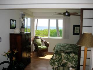 Beachfront - Hibiscus Suite at Dolphins Point Maui