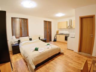 Cosy  Studio Apartment, Bansko
